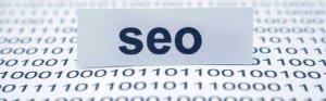 SEO Expert Witness in California