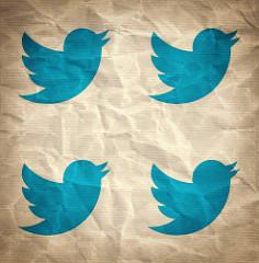 Twitter Marketing Expert